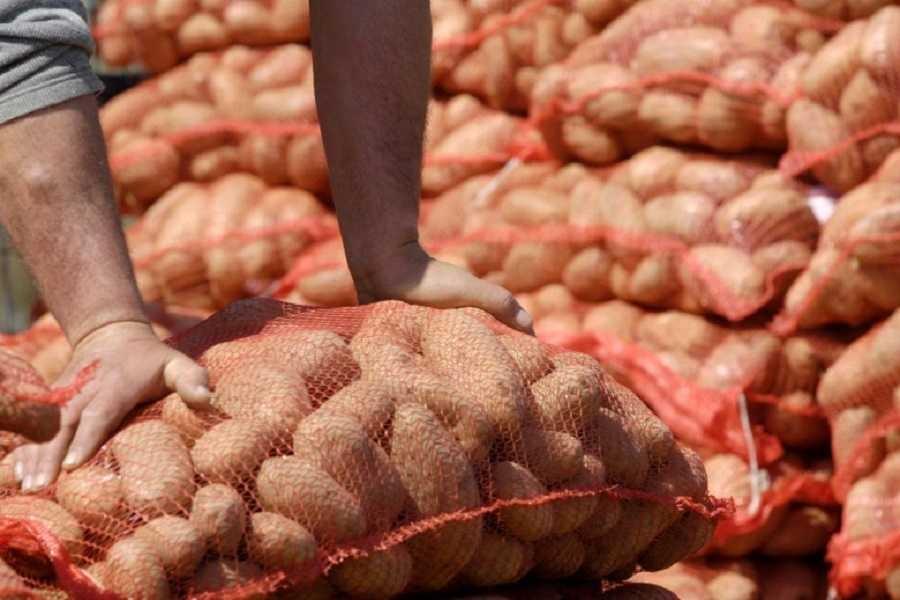 Αποτέλεσμα εικόνας για διανομη πατατας