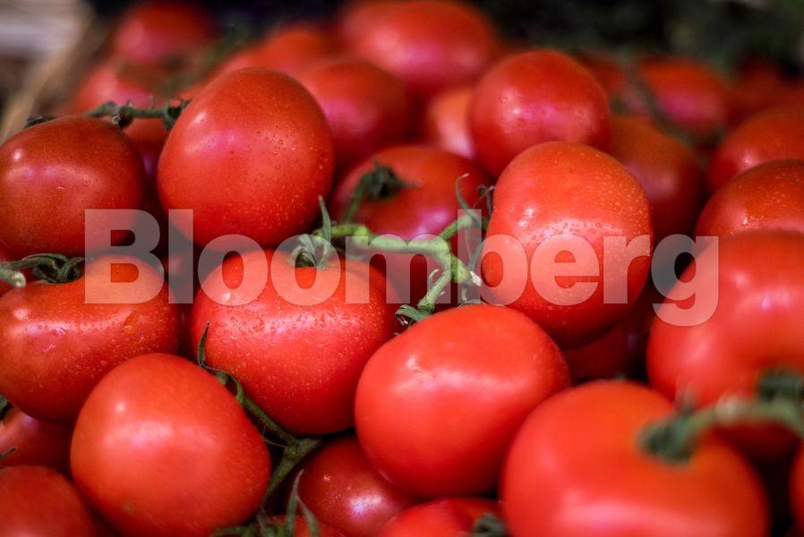 Bloomberg: Nτομάτες και αγγούρια τα νέα «θύματα» της ενεργειακής κρίσης